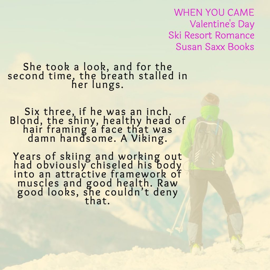 Teaser of Ski Patroller standing on a snowy mountain from When You Came by Susan Saxx